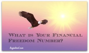 What is Your Financial Freedom Number?