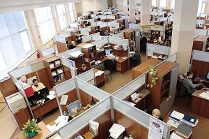 work cubicle farm